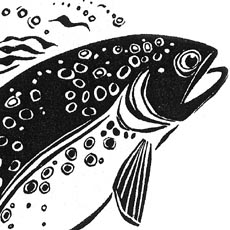 bold woodcut detail of head of leaping salmon