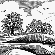 detail from engraving style image of golf bunker trees and sky