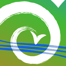 detail of spiral design for transition town logo